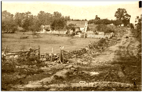 Lydia Leister Farm